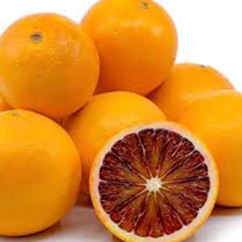 Citrus Tarroco - Seedless Blood Red