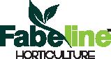 Buy Plants Online | Pakistan Online Nursery